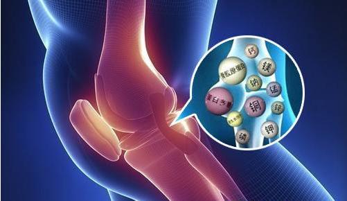 胶原蛋白肽对骨髓的养护作用.png